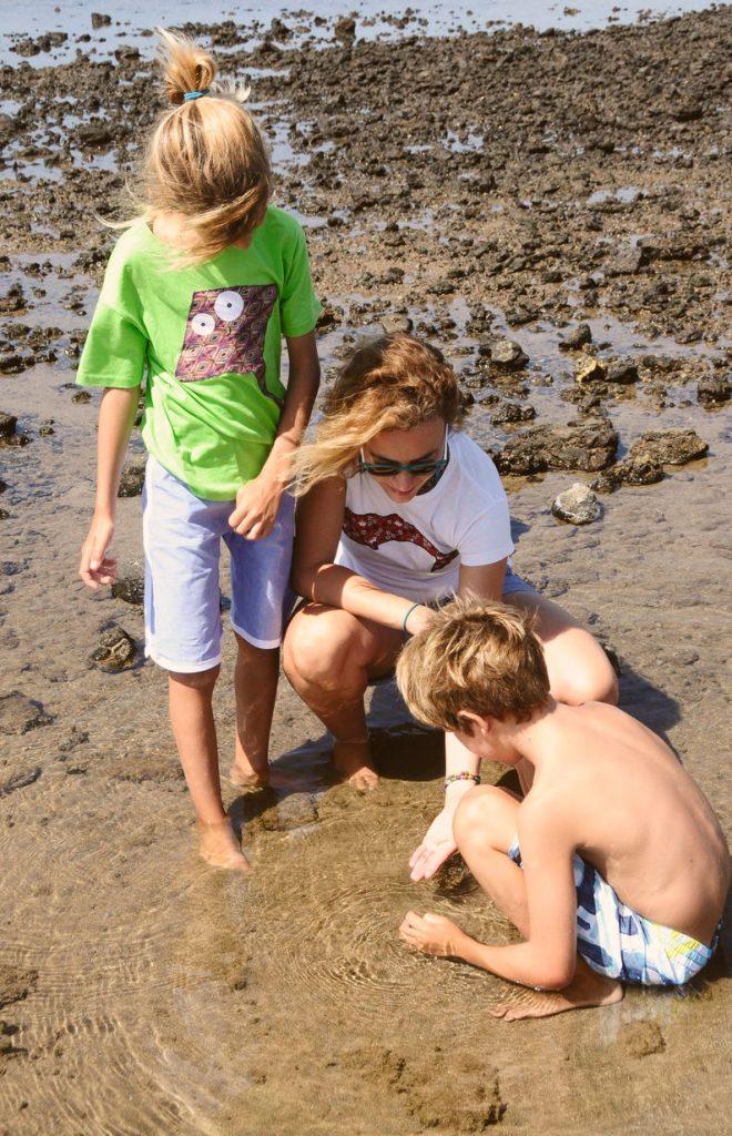 verano sin residuos, buscando tesoros en la playa