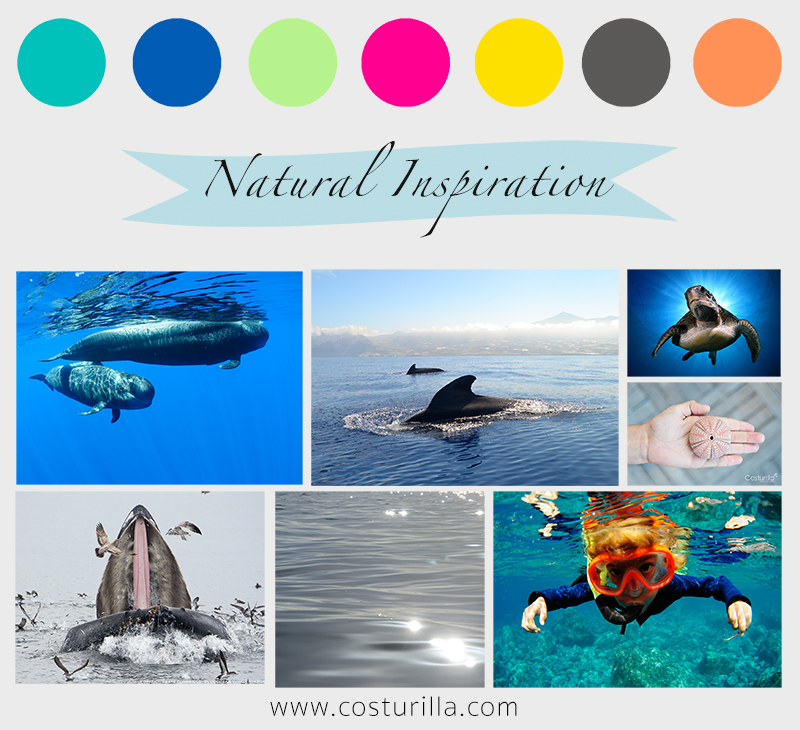 Donde nace nuestra inspiración, cetáceos de Canarias