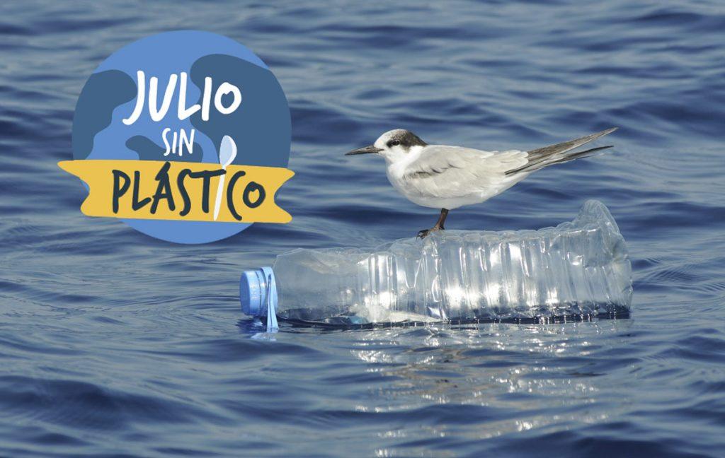 Charran sobre botella de plástico, julio sin plástico