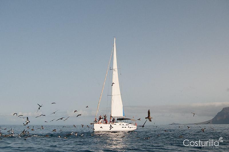 Third Element avistamiento de cetaceos en tenerife